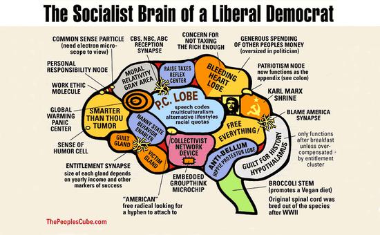 Cervello liberal democratico