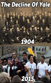 the-decline-of-yale