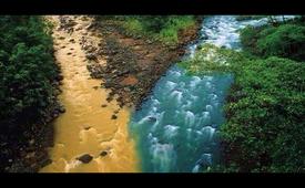 Quando le acque chiare si mescolano con quelle scure inevitabilmente s'intorbidano.